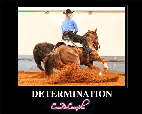 Determination Motivational Poster